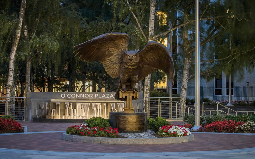 Statue of new night owl in O'connor plaza