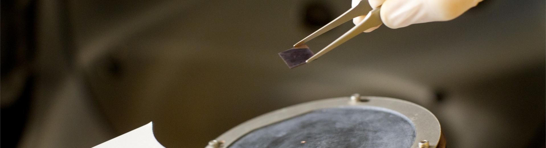 A Temple student holding tweezers performing an experiment in a lab.