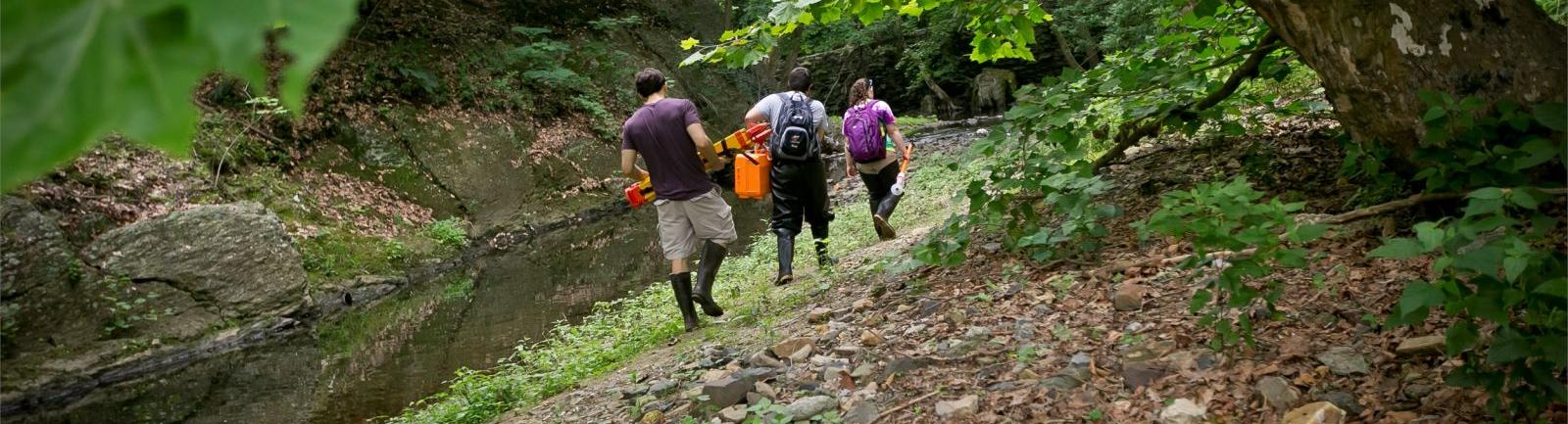 Three Temple students walking along a creek, carrying equipment.