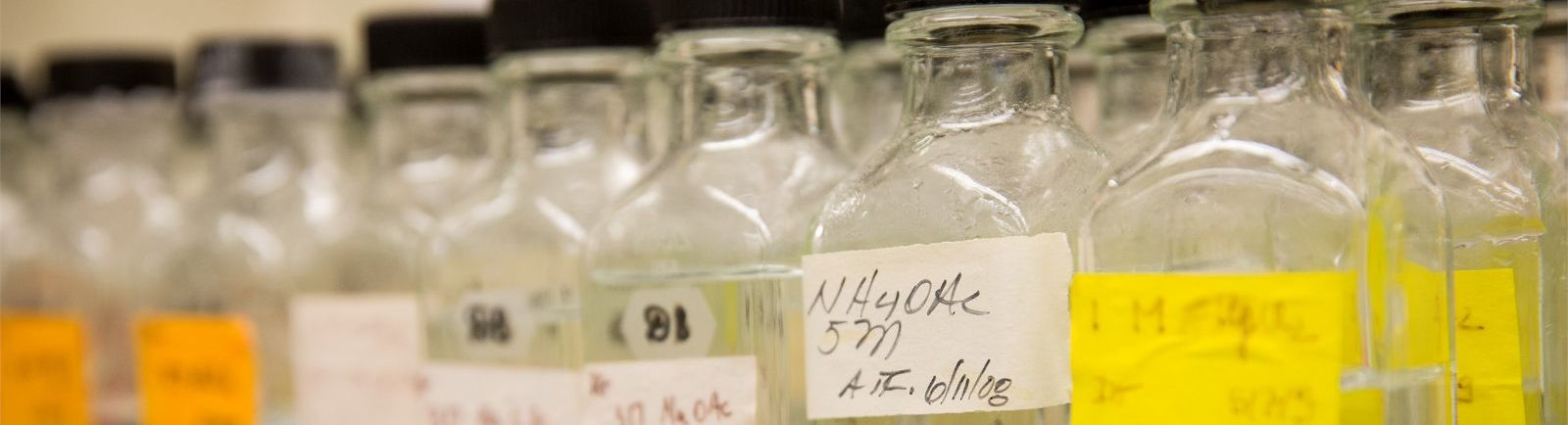 Glass containers with yellow labels lined up in a Biology lab