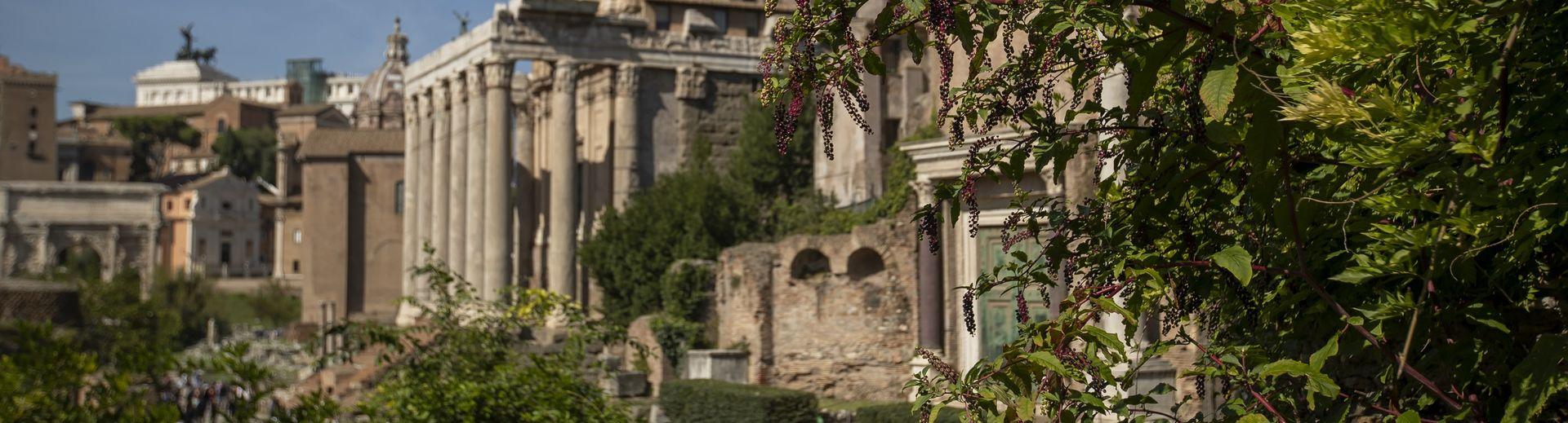 Temple University Rome campus historic buildings