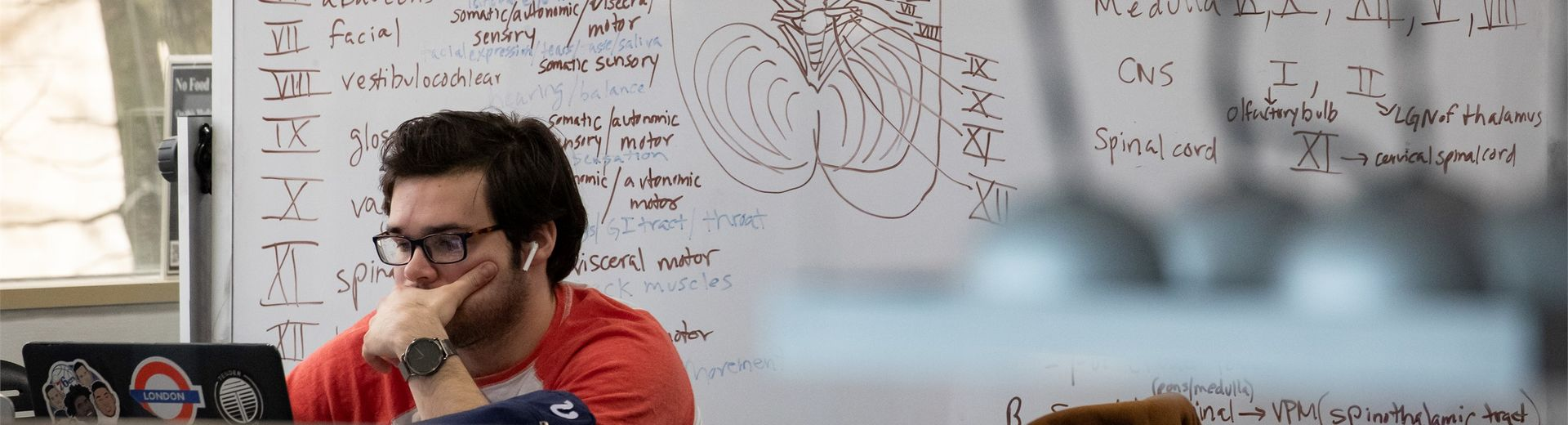 A Temple student studies neuroscience in a lab on campus.