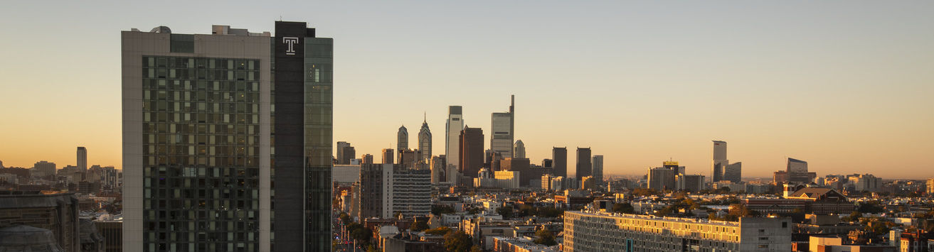 The Philadelphia skyline at dusk as visible from Main Campus