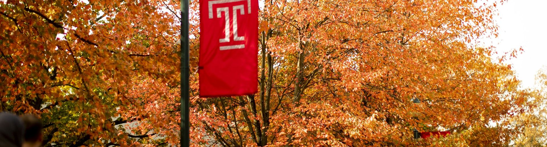 Students walking under a Temple T flag and trees with colorful autumn leaves