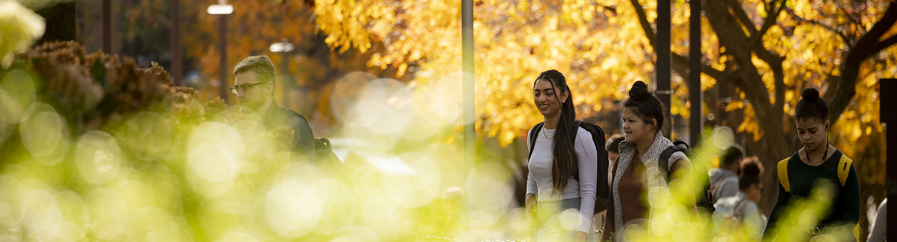 Students walk across Main Campus on a sunny fall day.