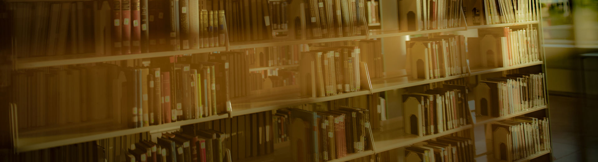 abstract image of bookshelves at Charles Library.