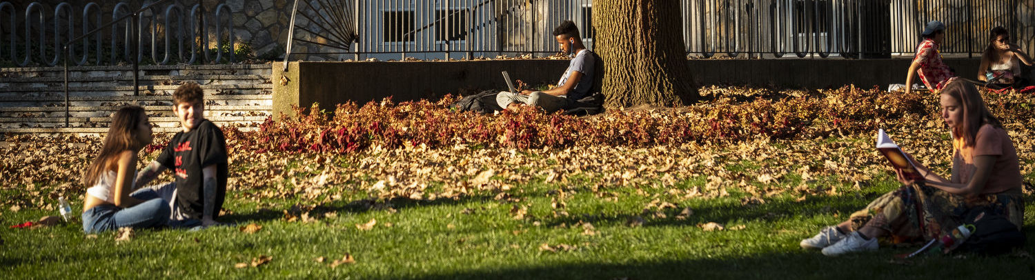 Students sit on the grass in Main Campus.