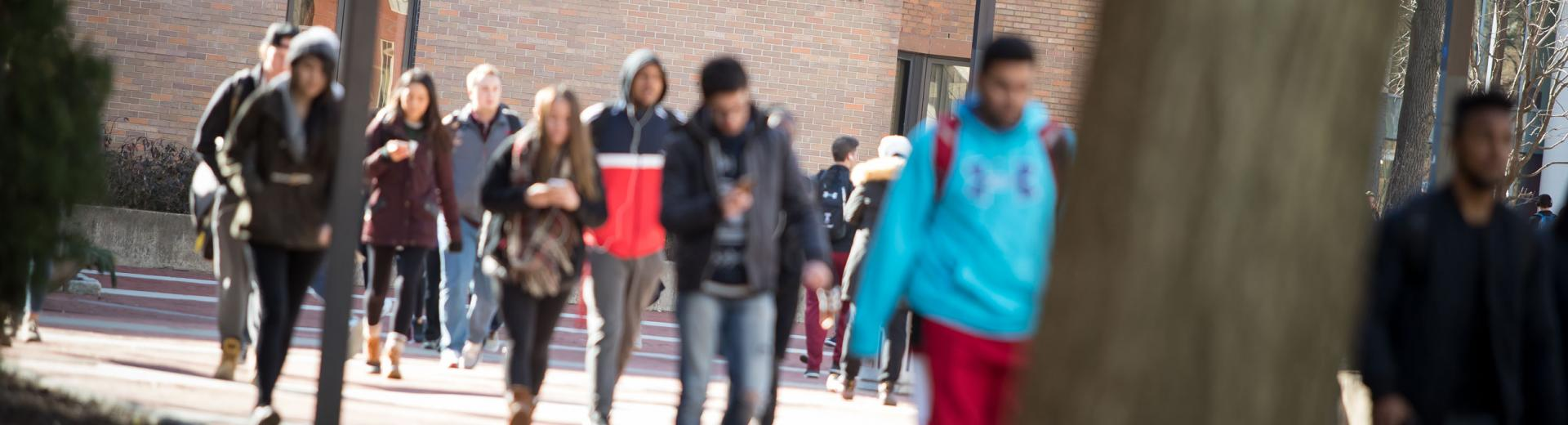 students walking on university campus during a class change