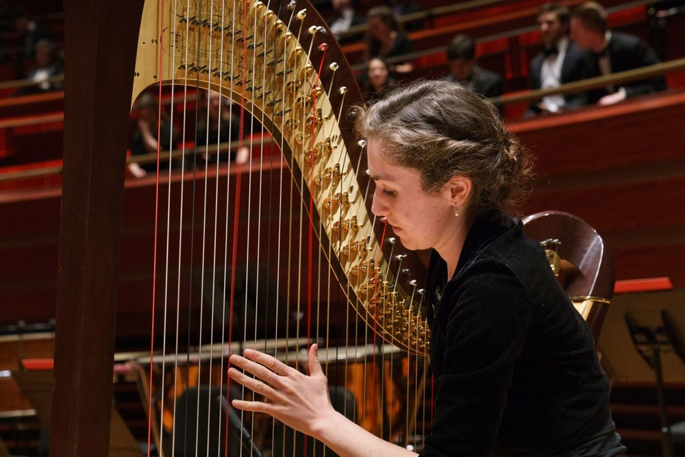 A Boyer College of Music and Dance student plays the harp during rehearsal.